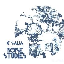 Noise Studies