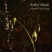 Absorb The Quiet